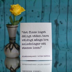Disktrasa, DÅLIGT VÄDER - Erika Tubbin
