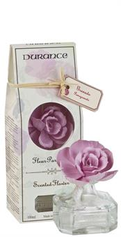 Durance Coloured Scented Flower Eglantine