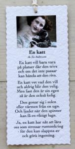 Diktkort - En katt