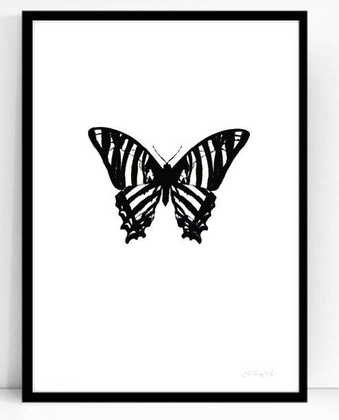 Poster - Atelje Epifor (Hippotigris)- 50x70