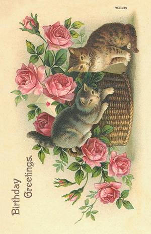 Paketkort Vintage, Sköna Ting - Birthday Greetings (med katter och rosor)