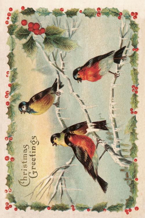 Kort från Sköna Ting - Julfåglar - vintage vykort