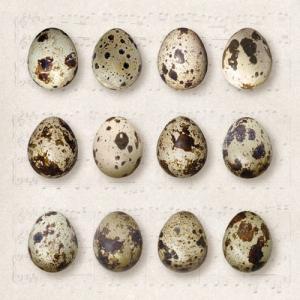 Ambiente Servetter - Quail Eggs