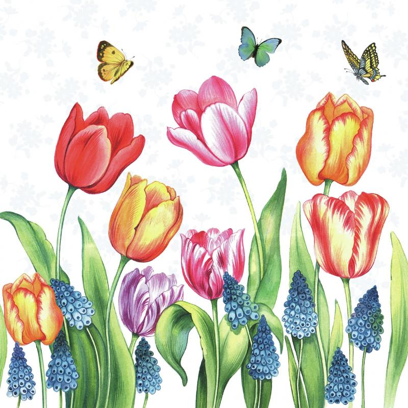 Ambiente Servetter - Tulips & Muscari- Kaffe