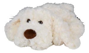 HUGO, vit hund - Bukowski