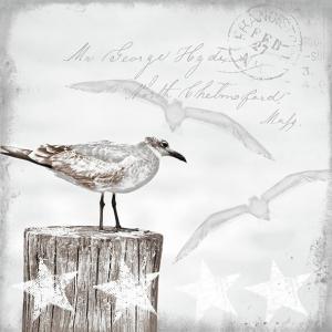 Ambiente Servetter - Seagulls