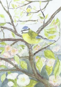 Dubbelvikt minikort i akvarell - Blåmes