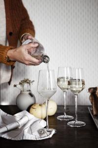 ERNST Glas för mousserande dryck (2 st)