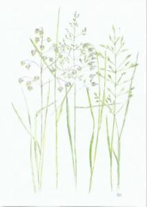 Dubbelvikt minikort i akvarell - Gräs