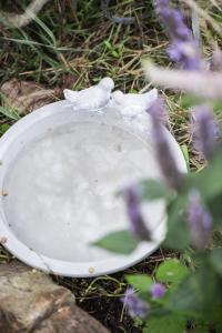 Ib Laursen, Fågelbad i Cement
