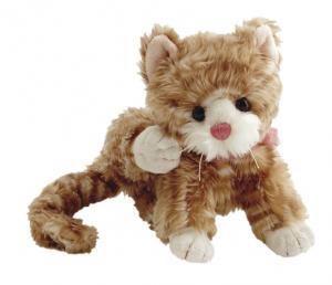 Katt tabby 18 cm, Maciek - Bukowski