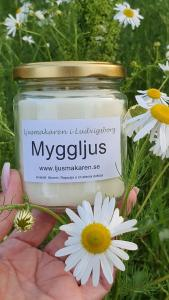 Myggljus - Ljusmakaren i Ludvigsborg