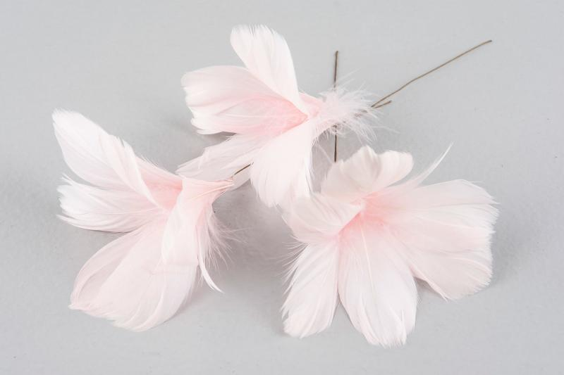 Fjädrar till riset, ljusrosa (blomma)