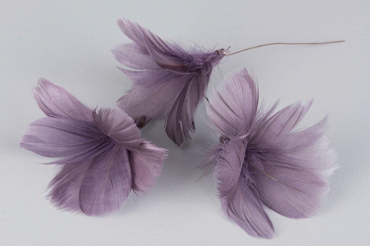 Fjädrar till riset, lila (blomma)