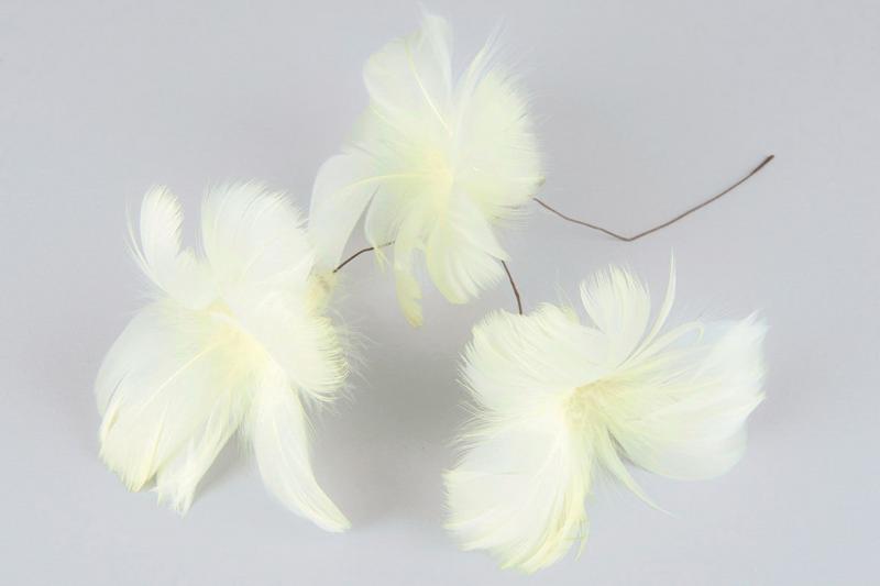 Fjädrar till riset, ljusgula (blomma)