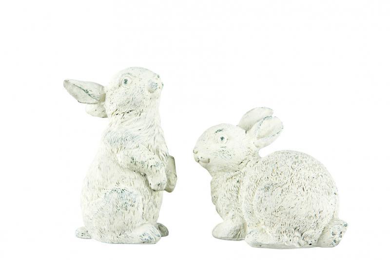 A lot, kanin- Liggande