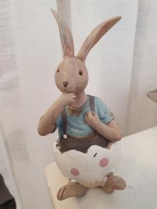 Kaninpojke i ägg