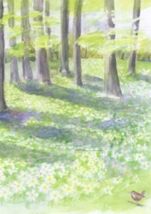 Dubbelvikt kort i akvarell - Våryra