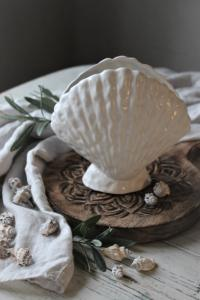 Vas Seashell, Stor - Majas Cottage