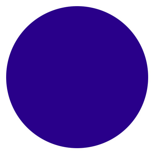 Iris Blue Violet