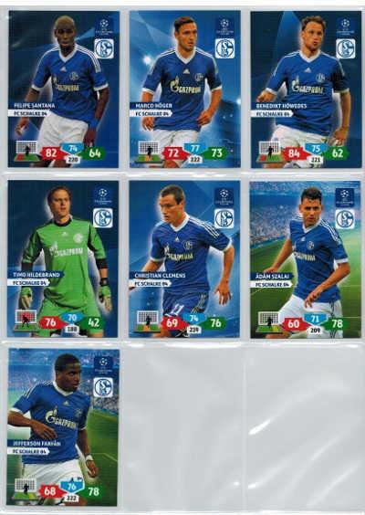 Base cards FC Schalke 04, 2013-14 Adrenalyn Champions League, Pick from list