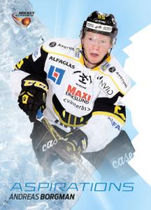 Aspirations 2015-16 HockeyAllsvenskan #AS20 Andreas Borgman
