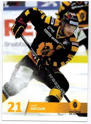 Base set (1-144) SHL 2013-14 series 1