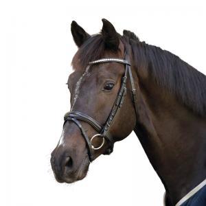 """Aachenträns """"Horse Guard"""""""