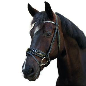"Aachenträns Ergo Flash noseband ""Horse Guard"""