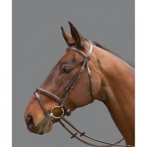 """Aachenträns Cyrano """"Mountain Horse"""""""