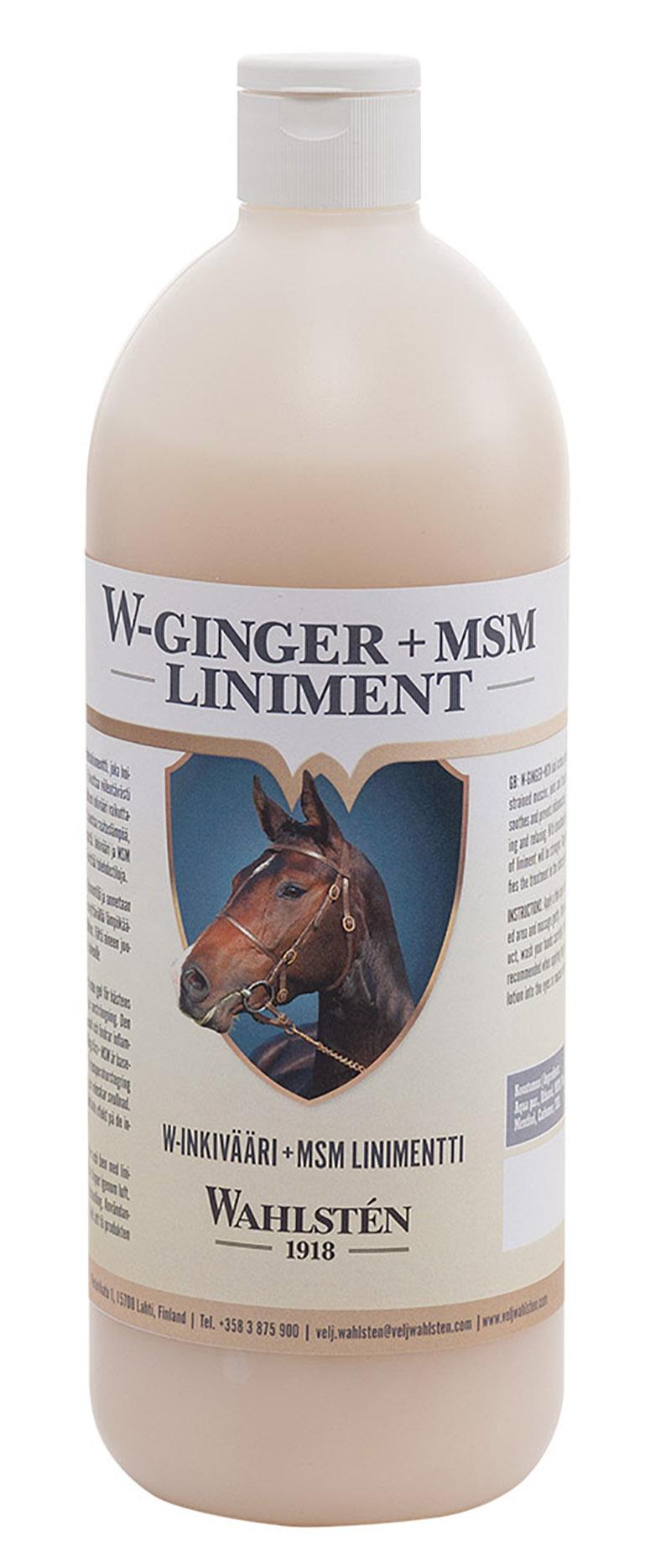 """W-Ginger+MSM Liniment """"Wahlsten"""" 1000ml"""