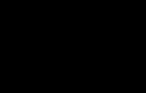 hella horns logo black