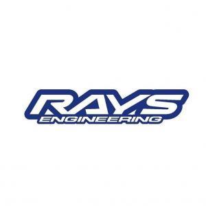 rays engingeering logo