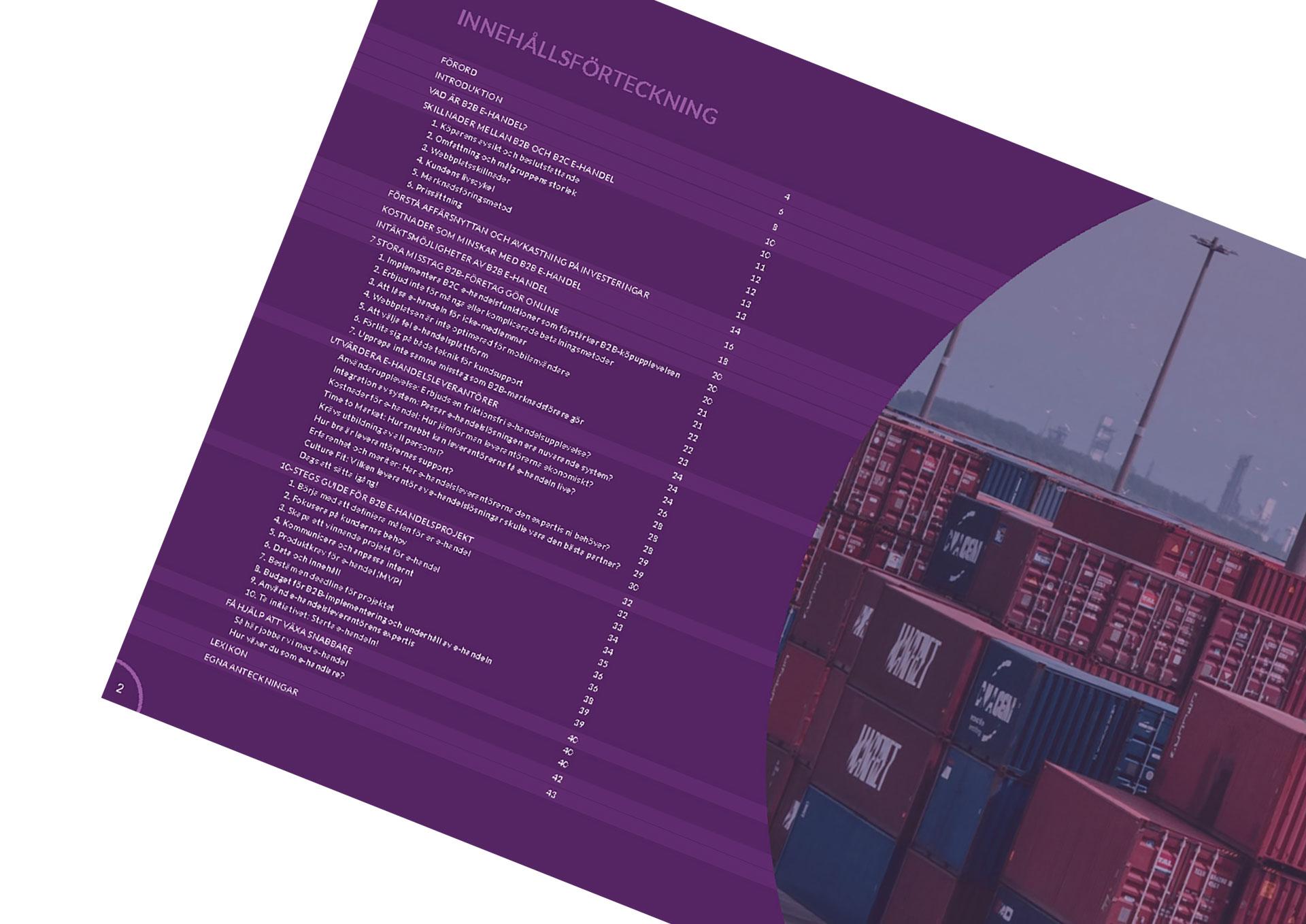 Uppslag från Starwebs Handbok för B2B E-handel