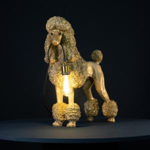 Lampa, Pudel