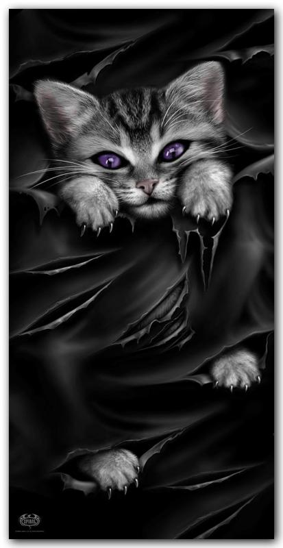 Handduk, Bright Eyes Cat