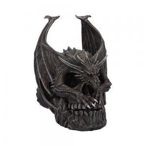 Döskalle Dekoration Draco Skull
