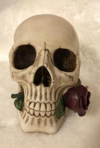 Dödskalle Sparbössa, Argentine Skull