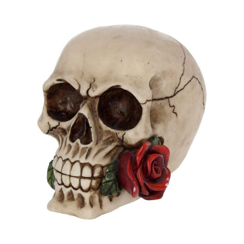 Dekoration Rose from the dead