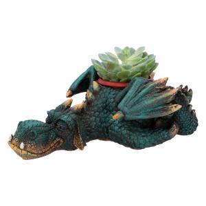 Drake, Dozing Plant/kruka