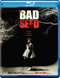 Bad Seed 1956 (BLU-RAY)