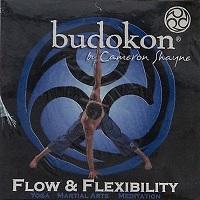 Budokon By Cameron Shayne - Flow & Flexibility