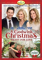 Godwink Christmas: Meant For Love