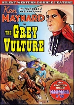 Grey Vulture / California In 49