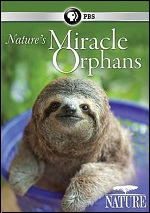 Nature's Miracle Orphans