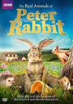 Real Animals Of Peter Rabbit