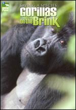Saving A Species - Gorillas On The Brink