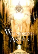 Witnessing Of Angels, The