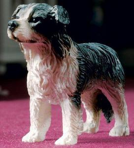 Hund Jess collie