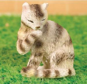 Katt Purdie sittande